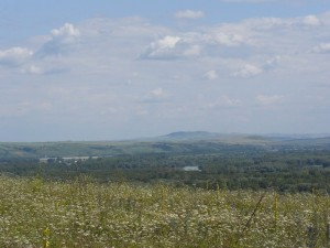 травы и горы