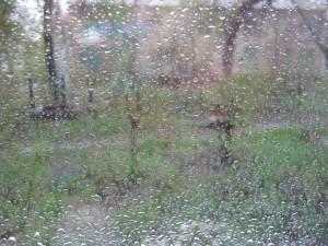 фото из окна