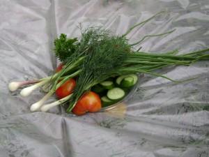 укроп, лук, томаты, огурцы