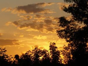 золотое небо