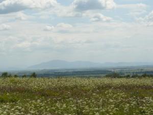 вид с горы Пикет - село Сростки