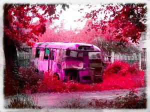 фотография автобуса